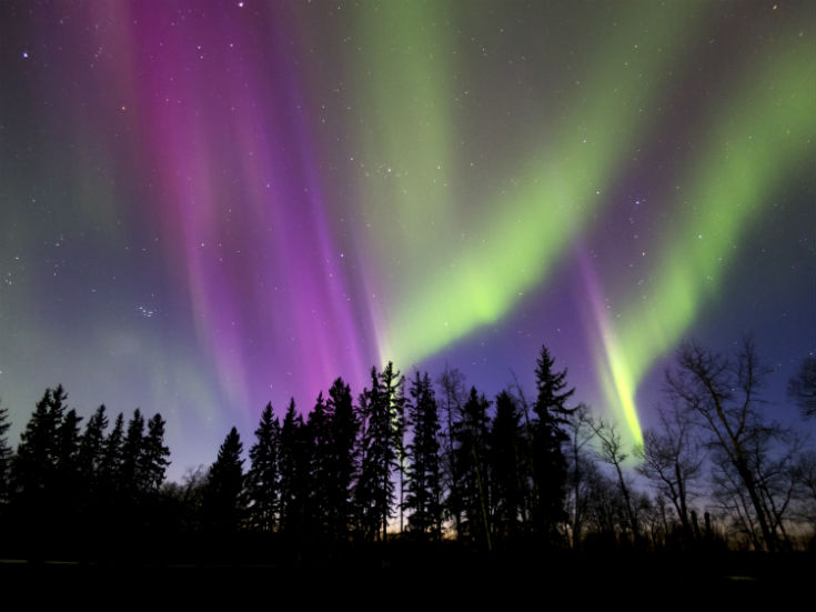Aurora Borealis (Northern lights) in Alberta Canada
