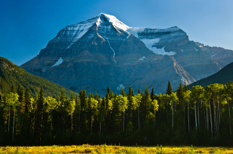 Early morning view of Mount Robson