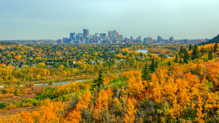 View of Calgary downtown from Edworthy park