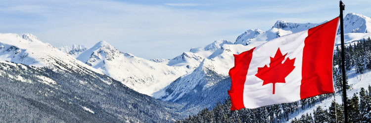 Canadian Flag in a Snowy Landscape
