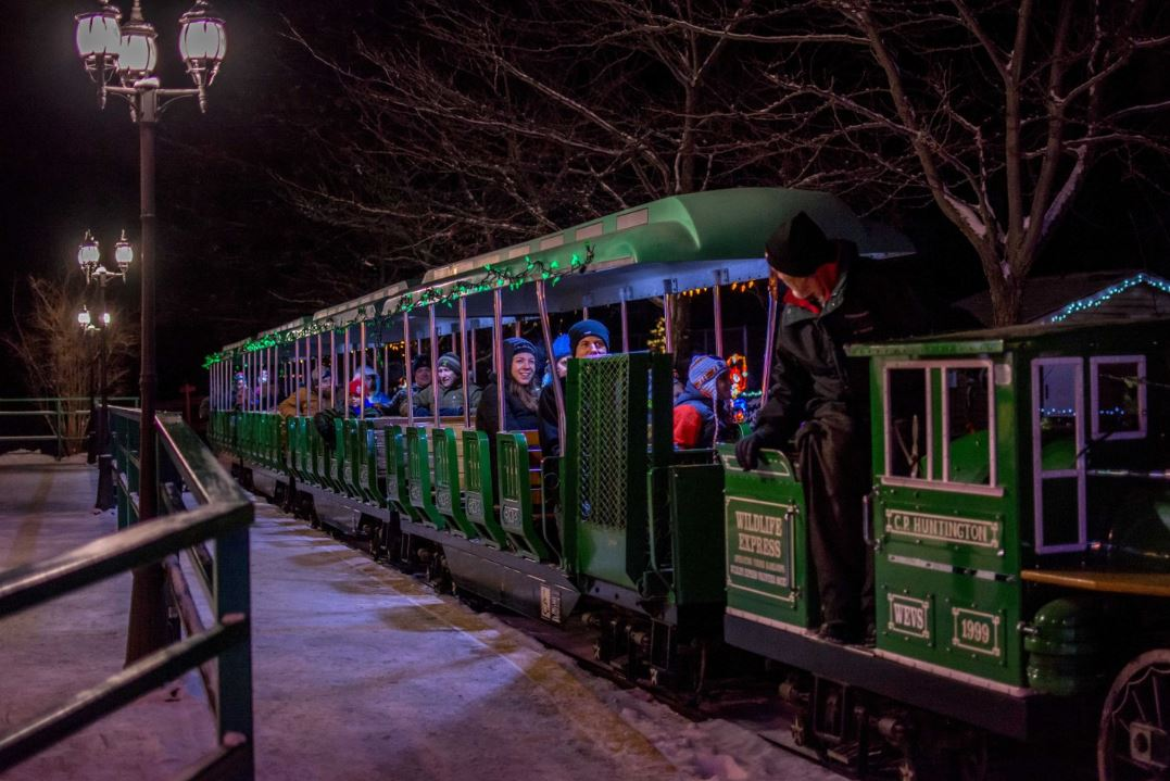 A green train with gold lettering in the dark. There is snow on the ground.
